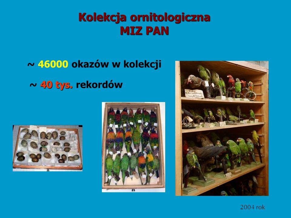 Kolekcja ornitologiczna