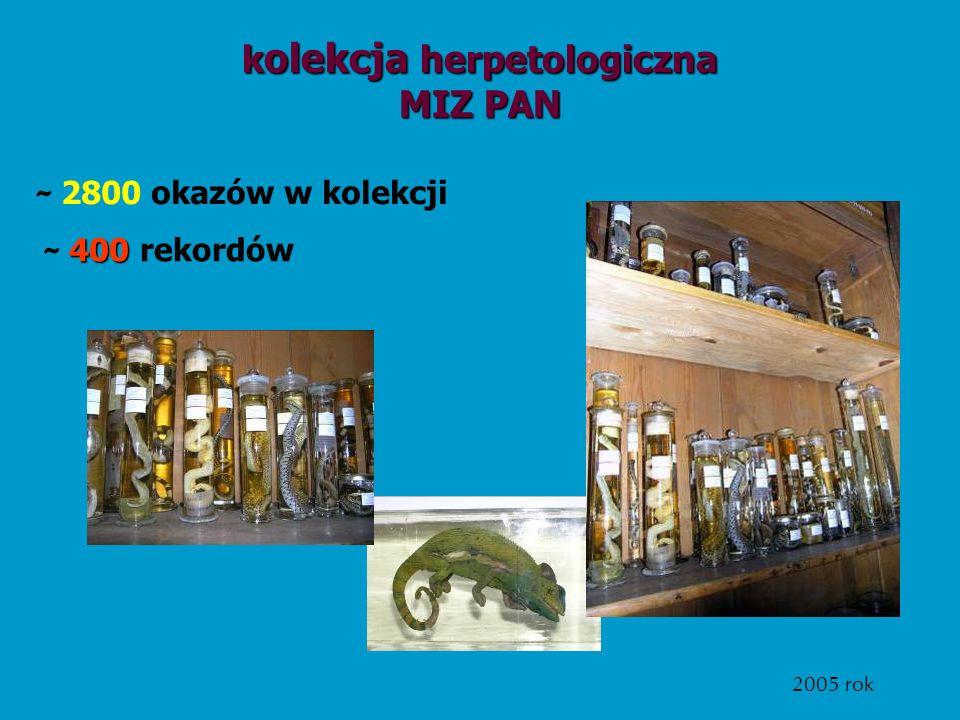 kolekcja herpetologiczna