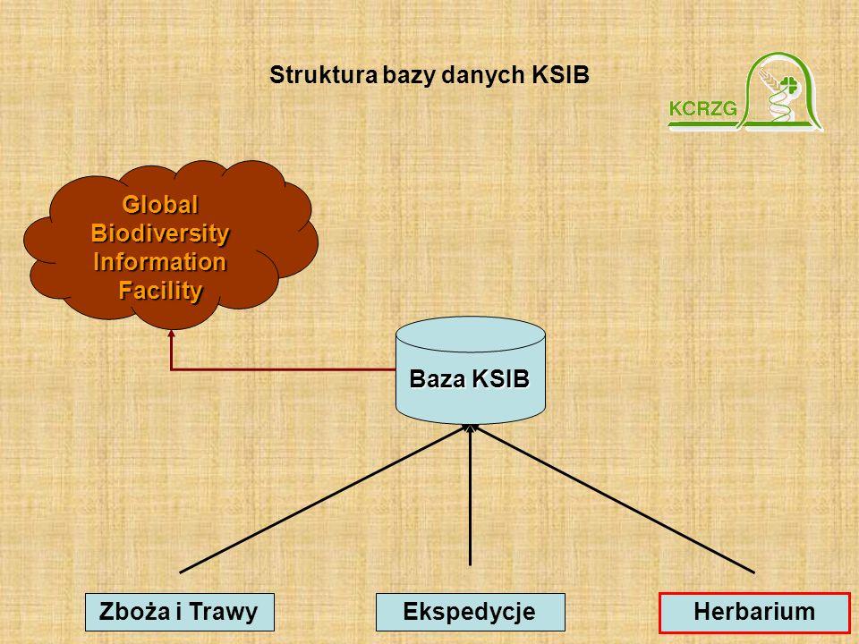 Struktura bazy danych KSIB Global Biodiversity Information Facility