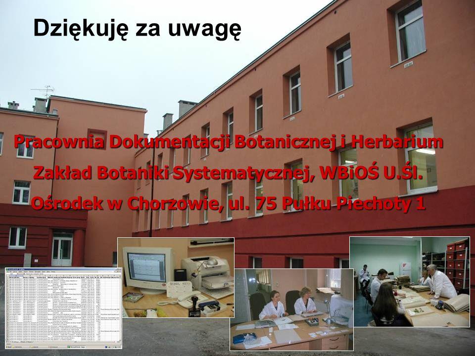 Ośrodek w Chorzowie, ul. 75 Pułku Piechoty 1