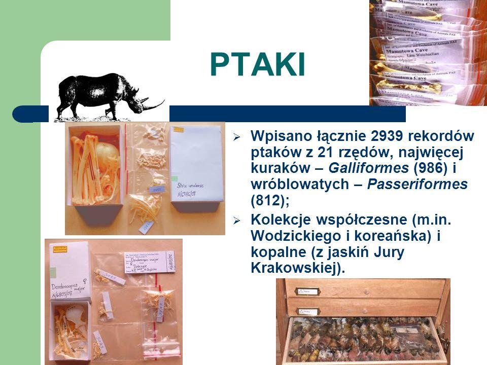 PTAKI Wpisano łącznie 2939 rekordów ptaków z 21 rzędów, najwięcej kuraków – Galliformes (986) i wróblowatych – Passeriformes (812);