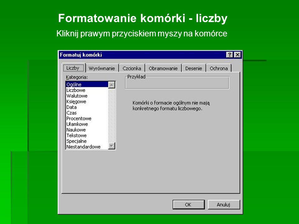 Formatowanie komórki - liczby