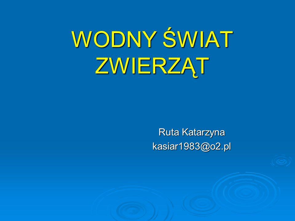 Ruta Katarzyna kasiar1983@o2.pl