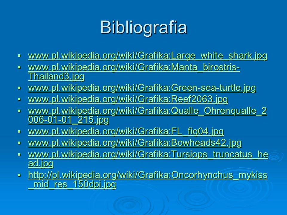 Bibliografia www.pl.wikipedia.org/wiki/Grafika:Large_white_shark.jpg