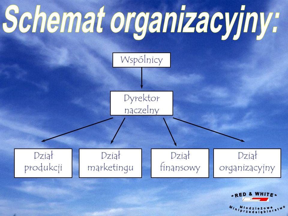 Schemat organizacyjny: