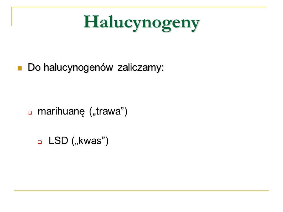"""Halucynogeny Do halucynogenów zaliczamy: marihuanę (""""trawa )"""