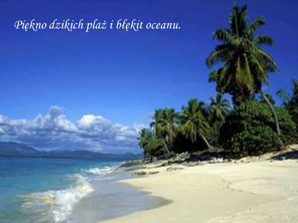 Piękno dzikich plaż i błękit oceanu.