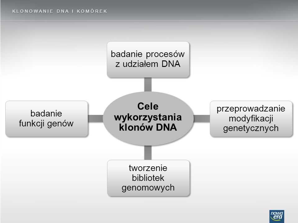 Cele wykorzystania klonów DNA