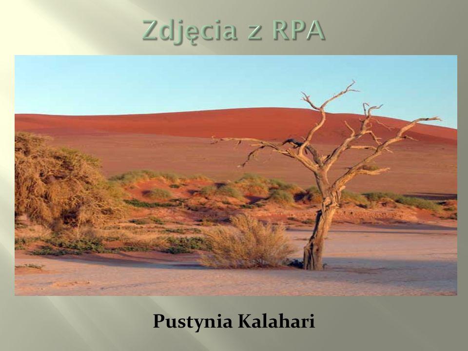Zdjęcia z RPA Pustynia Kalahari