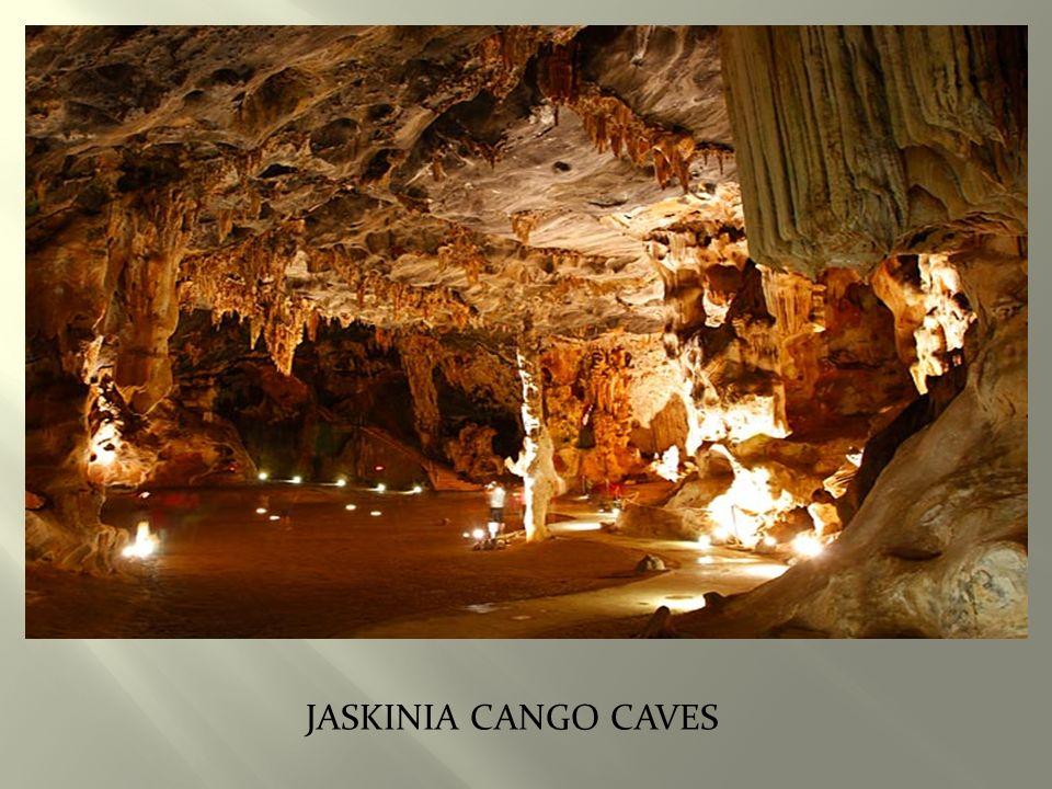 JaskiniA Cango Caves