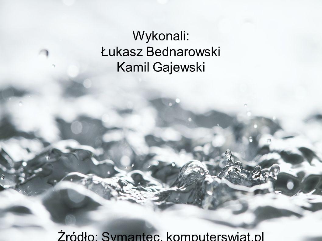 Wykonali: Łukasz Bednarowski Kamil Gajewski