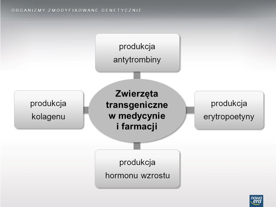 Zwierzęta transgeniczne w medycynie i farmacji