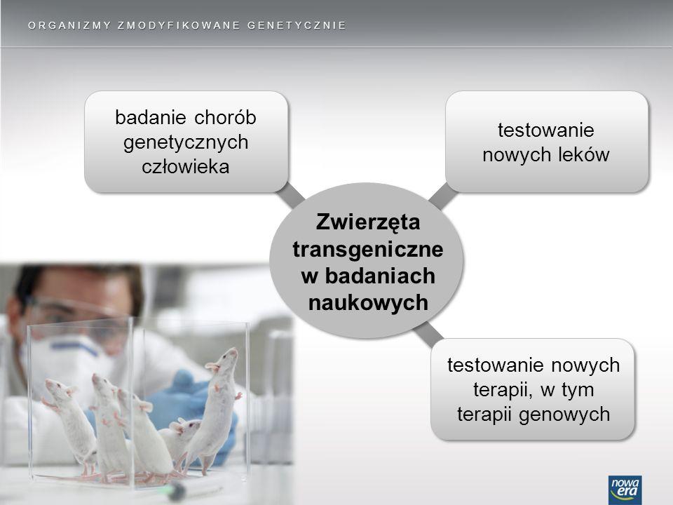 Zwierzęta transgeniczne w badaniach naukowych