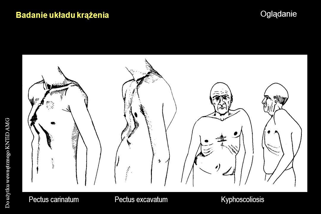 Badanie układu krążenia