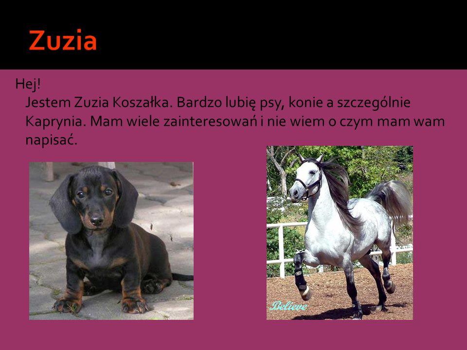 Zuzia Hej. Jestem Zuzia Koszałka. Bardzo lubię psy, konie a szczególnie Kaprynia.