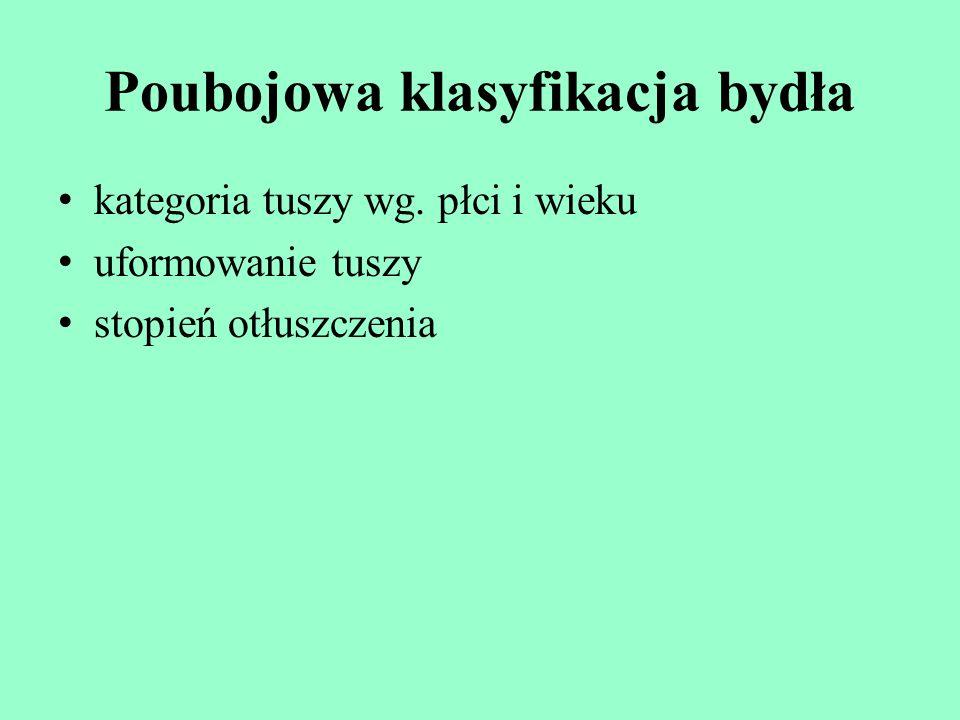 Poubojowa klasyfikacja bydła