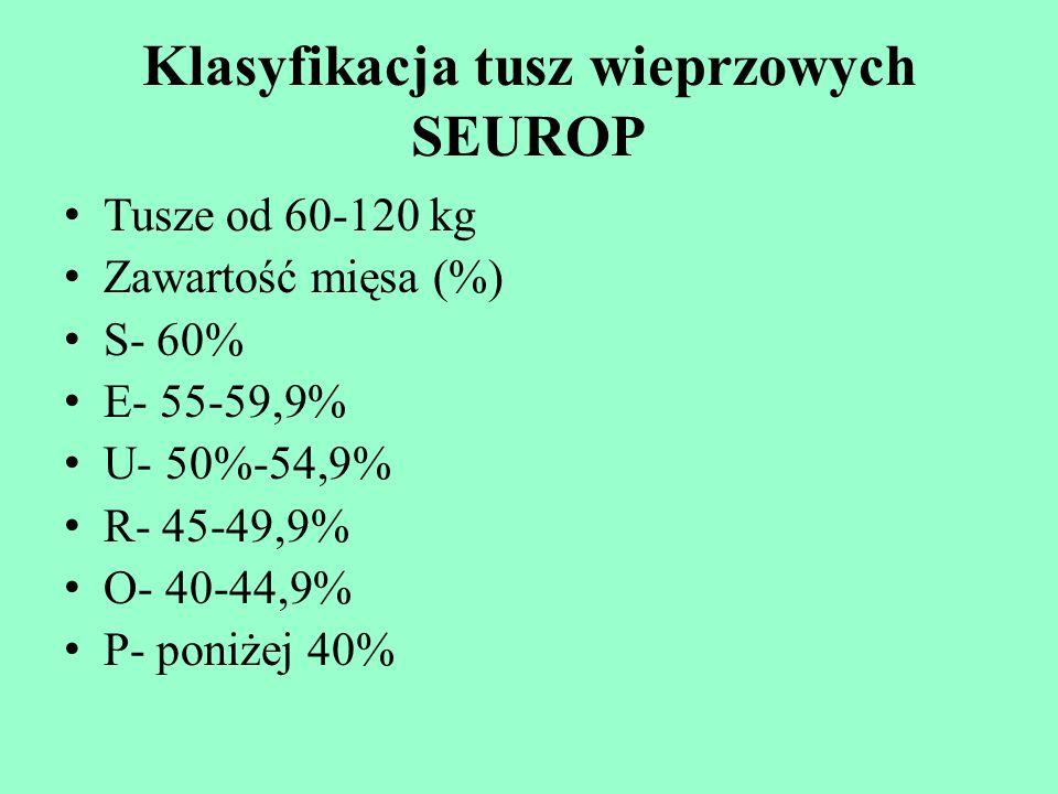 Klasyfikacja tusz wieprzowych SEUROP