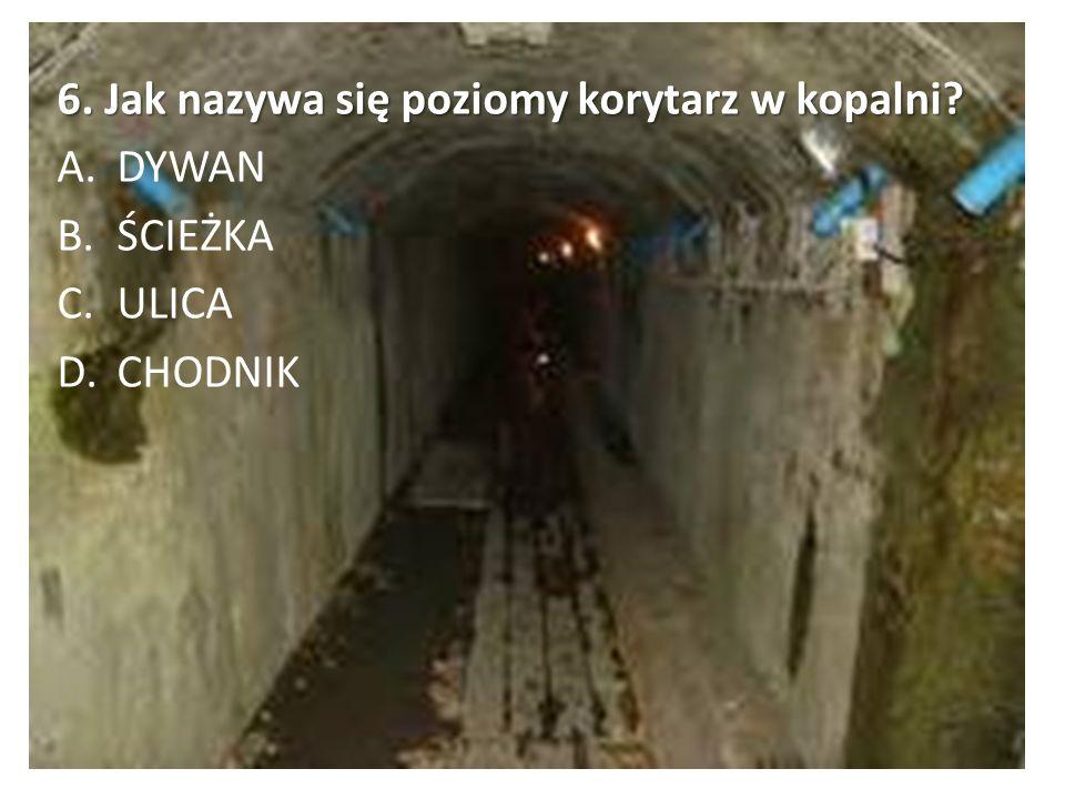 6. Jak nazywa się poziomy korytarz w kopalni