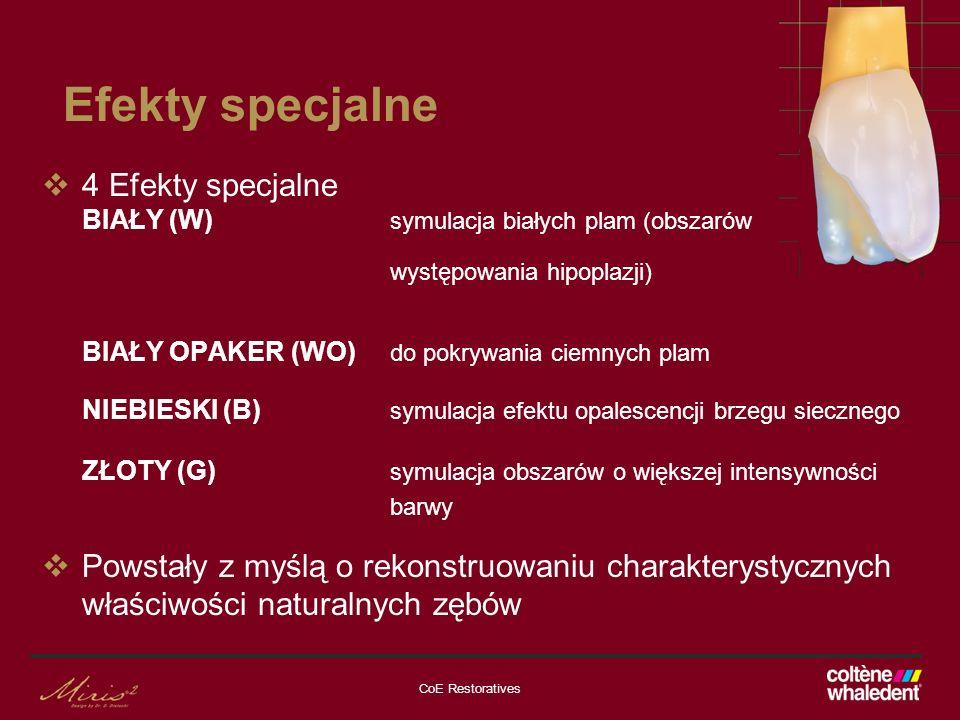 Efekty specjalne 4 Efekty specjalne BIAŁY (W) symulacja białych plam (obszarów. występowania hipoplazji)