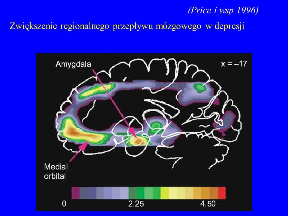 (Price i wsp 1996) Zwiększenie regionalnego przepływu mózgowego w depresji