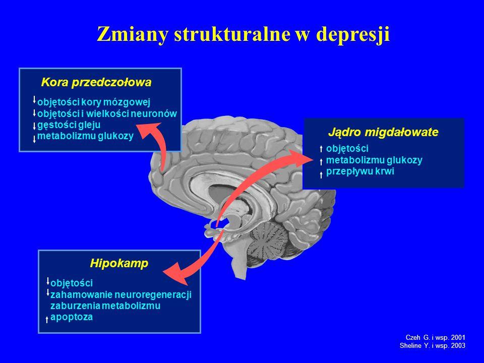 Zmiany strukturalne w depresji