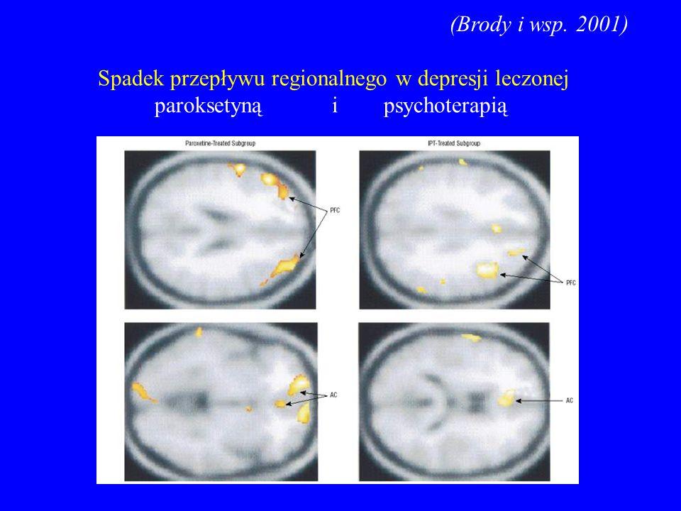 (Brody i wsp. 2001) Spadek przepływu regionalnego w depresji leczonej.