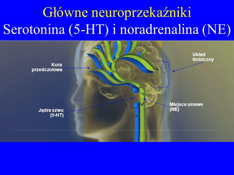 Główne neuroprzekaźniki Serotonina (5-HT) i noradrenalina (NE)