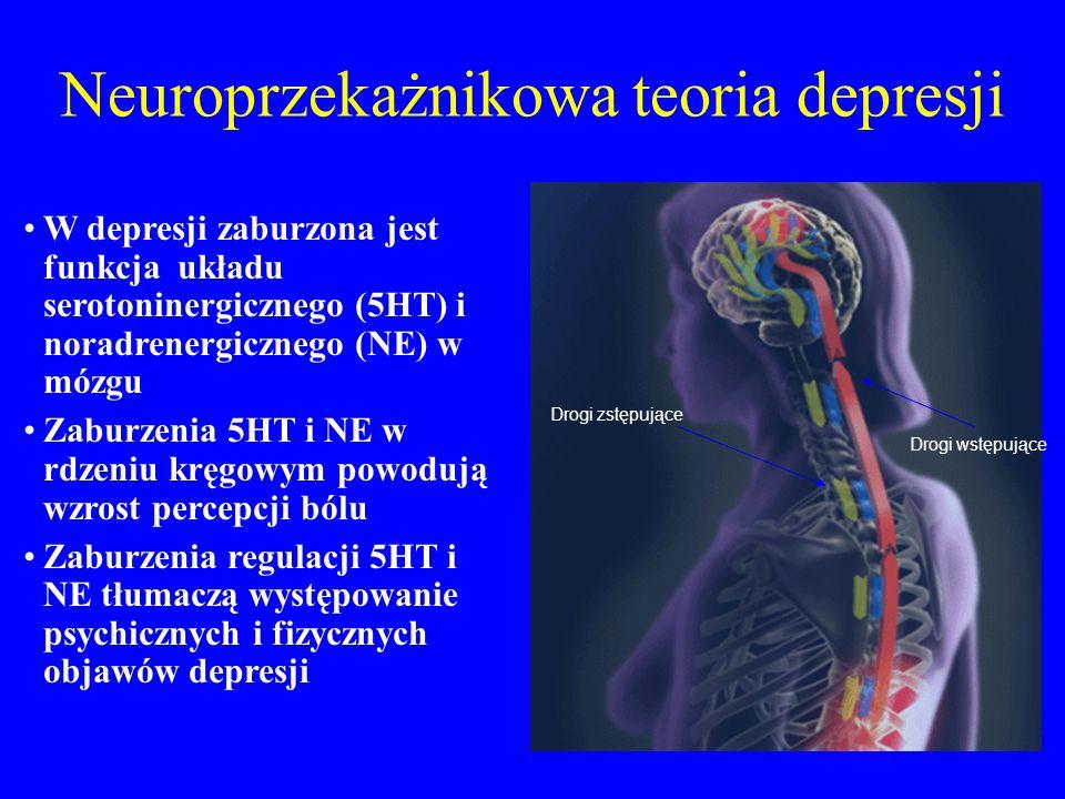 Neuroprzekażnikowa teoria depresji