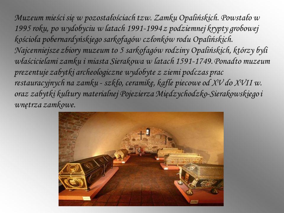 Muzeum mieści się w pozostałościach tzw. Zamku Opalińskich