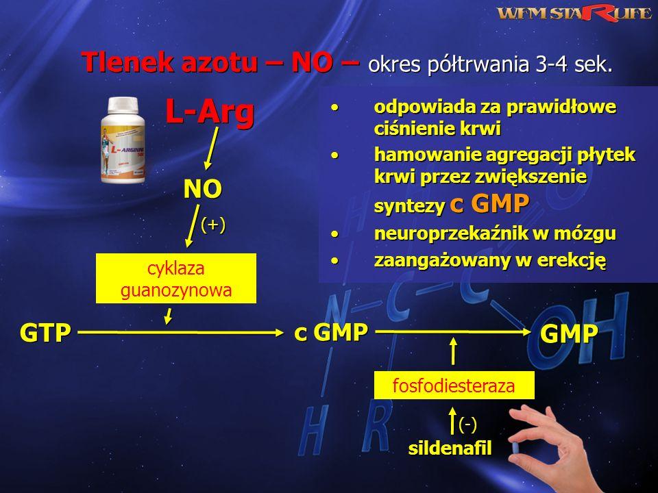 Tlenek azotu – NO – okres półtrwania 3-4 sek.