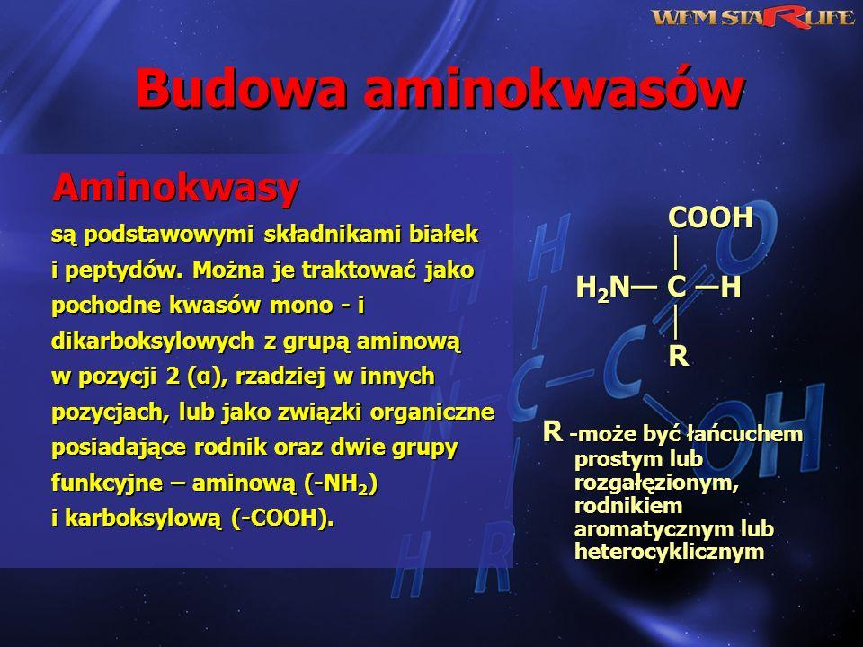 Budowa aminokwasów