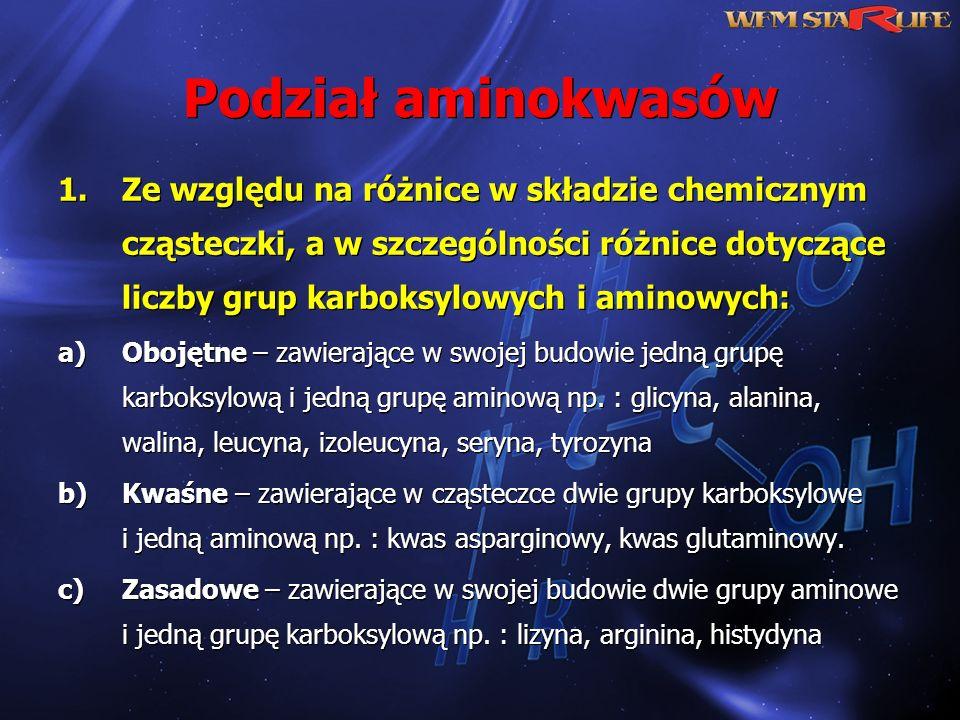 Podział aminokwasów