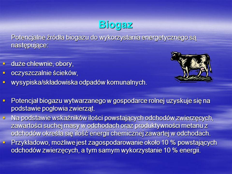 Biogaz Potencjalne źródła biogazu do wykorzystania energetycznego są następujące: duże chlewnie, obory,