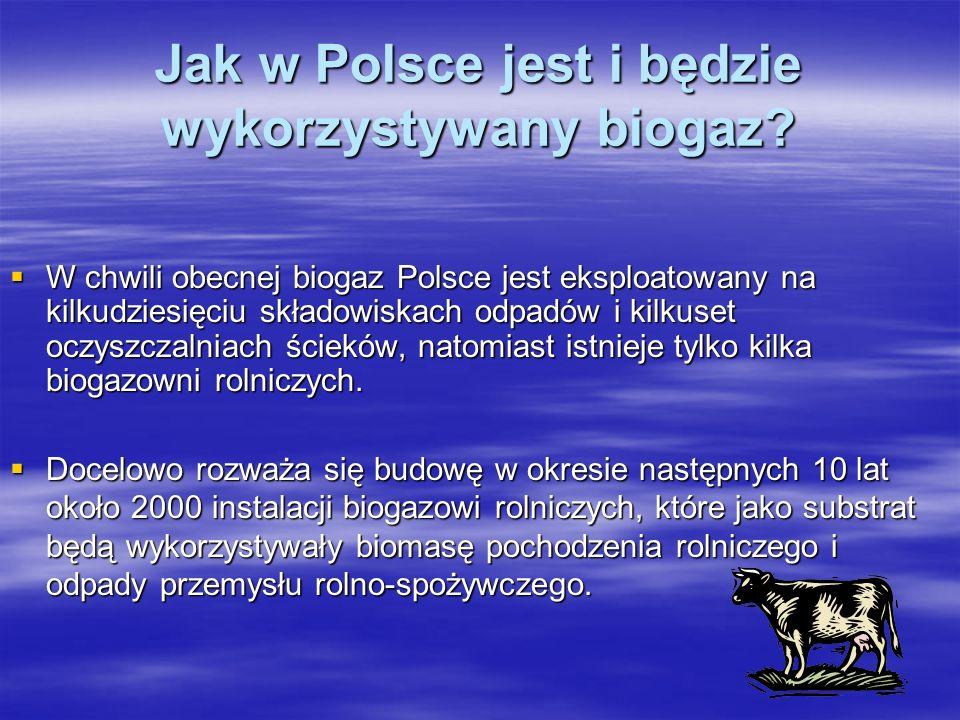 Jak w Polsce jest i będzie wykorzystywany biogaz
