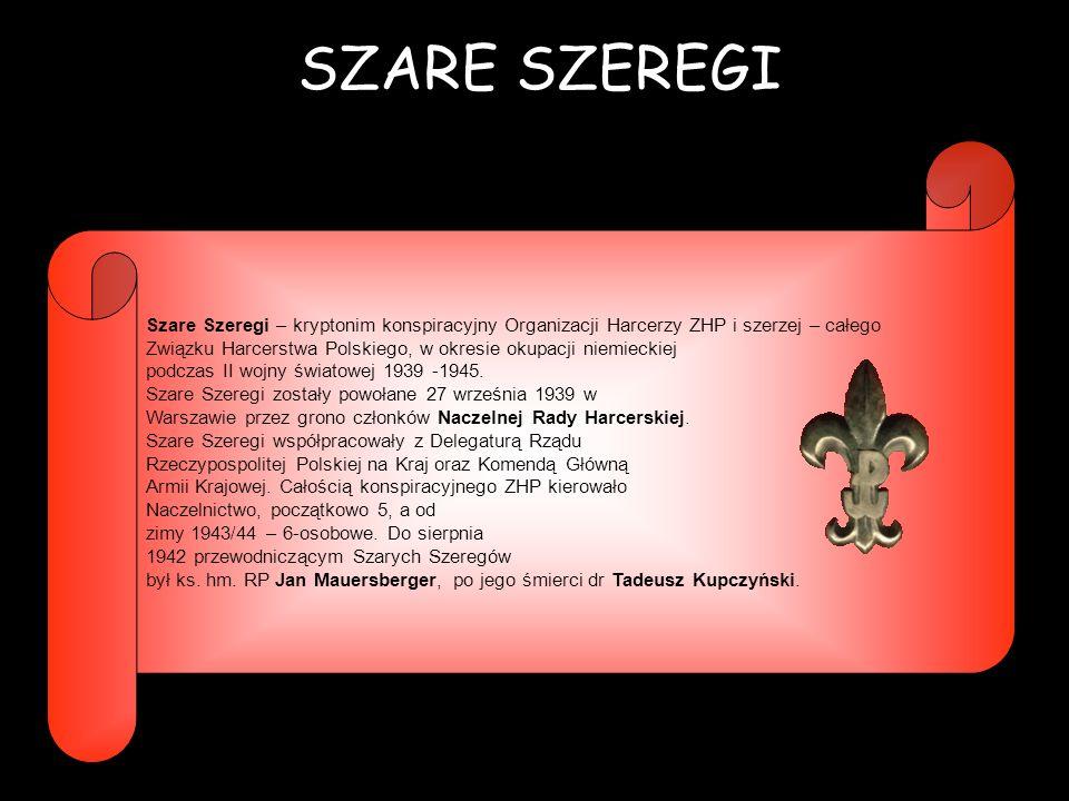 SZARE SZEREGI Szare Szeregi – kryptonim konspiracyjny Organizacji Harcerzy ZHP i szerzej – całego.