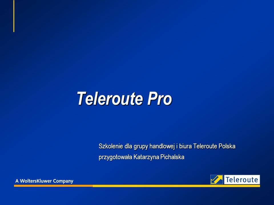 Teleroute Pro. Szkolenie dla grupy handlowej i biura Teleroute Polska