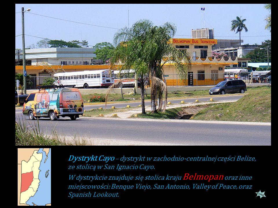 Dystrykt Cayo – dystrykt w zachodnio-centralnej części Belize, ze stolicą w San Ignacio Cayo.