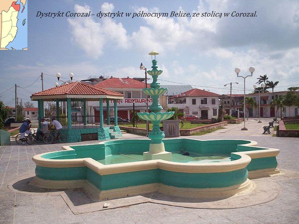 Dystrykt Corozal – dystrykt w północnym Belize, ze stolicą w Corozal.