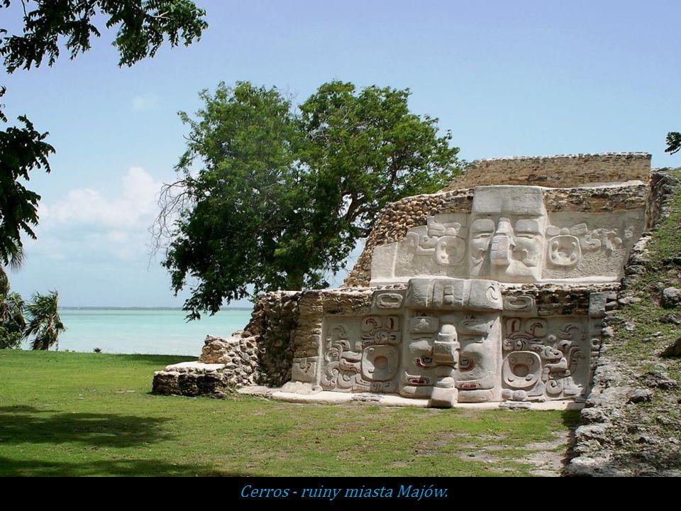 Cerros - ruiny miasta Majów.