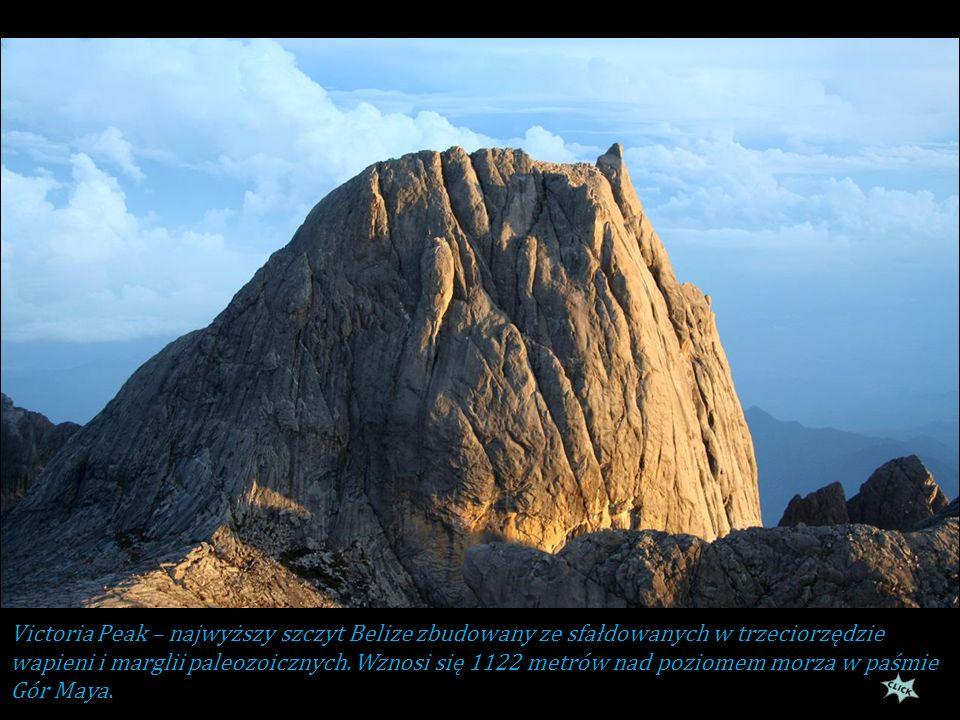Victoria Peak – najwyższy szczyt Belize zbudowany ze sfałdowanych w trzeciorzędzie wapieni i marglii paleozoicznych.