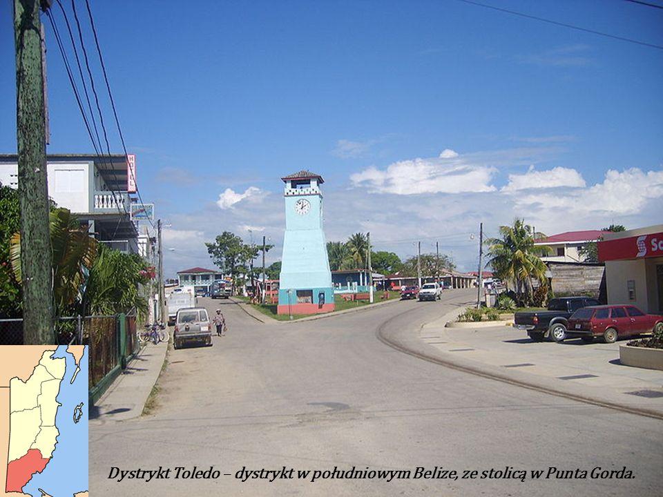 Dystrykt Toledo – dystrykt w południowym Belize, ze stolicą w Punta Gorda.