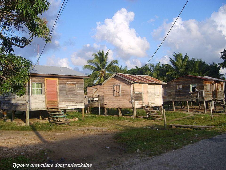 Typowe drewniane domy mieszkalne