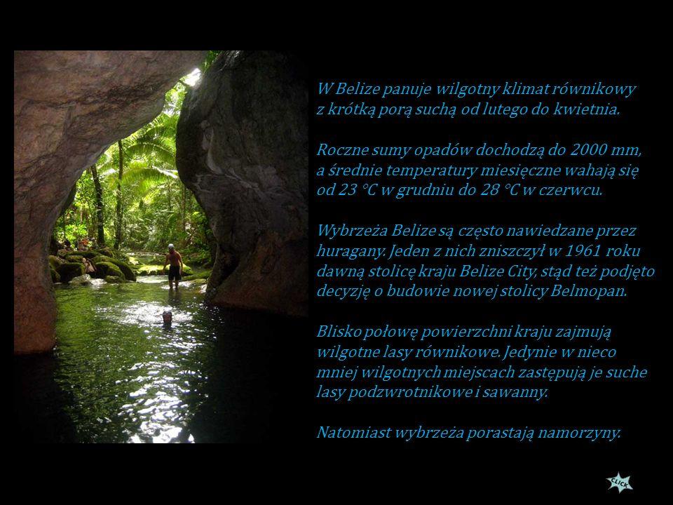 W Belize panuje wilgotny klimat równikowy