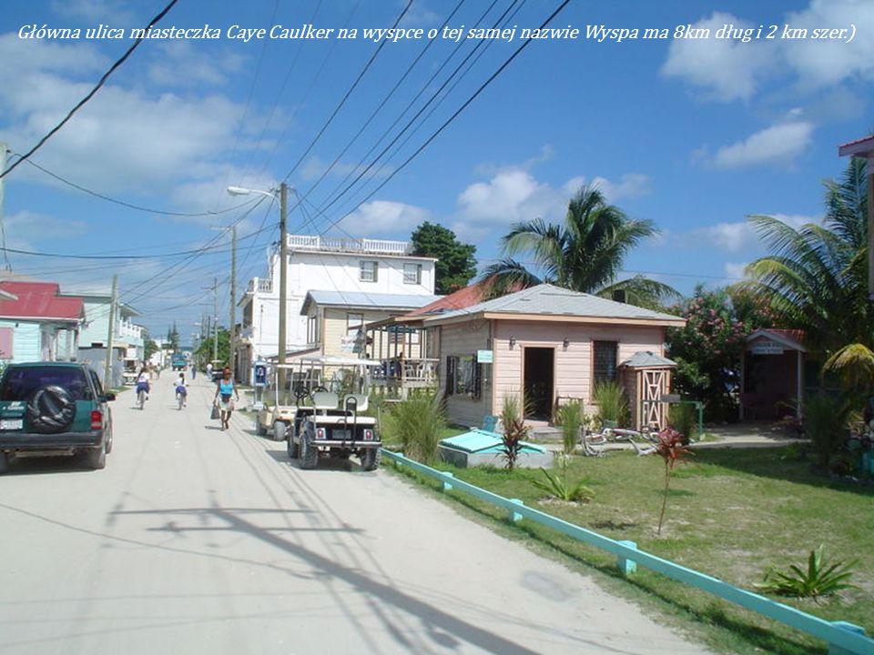 Główna ulica miasteczka Caye Caulker na wyspce o tej samej nazwie Wyspa ma 8km dług i 2 km szer.)