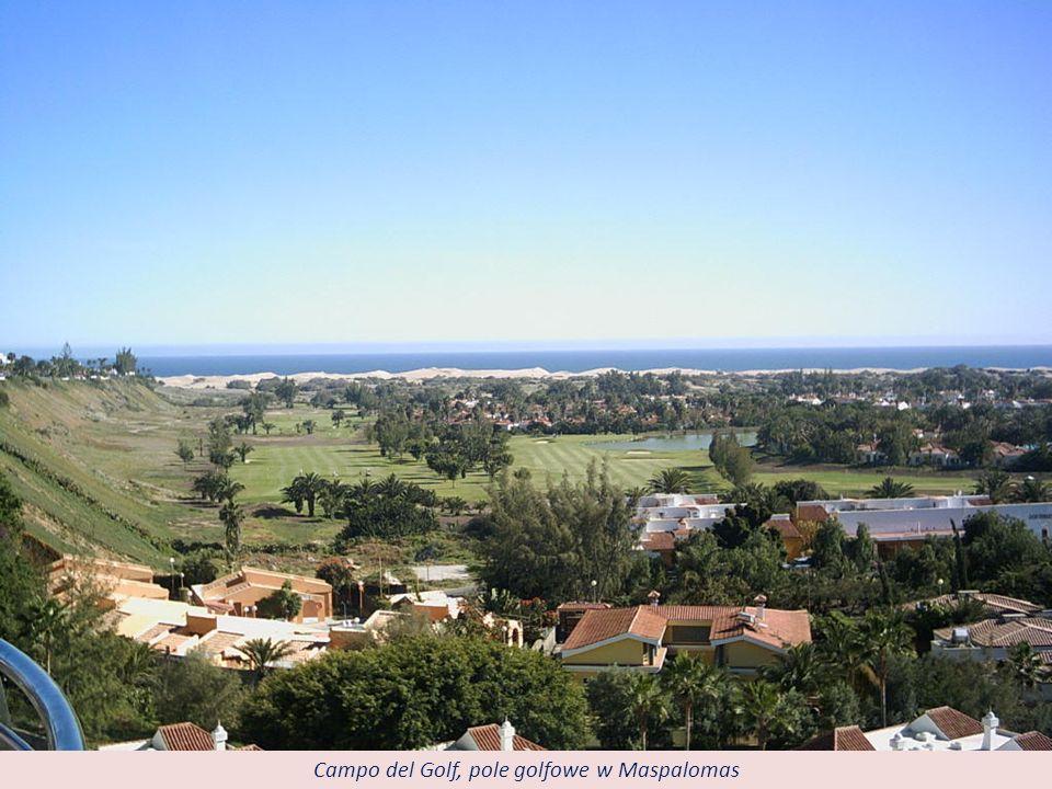 Campo del Golf, pole golfowe w Maspalomas