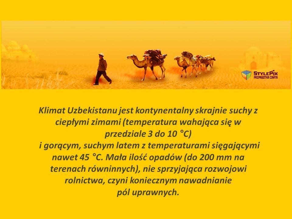 Klimat Uzbekistanu jest kontynentalny skrajnie suchy z ciepłymi zimami (temperatura wahająca się w przedziale 3 do 10 °C)