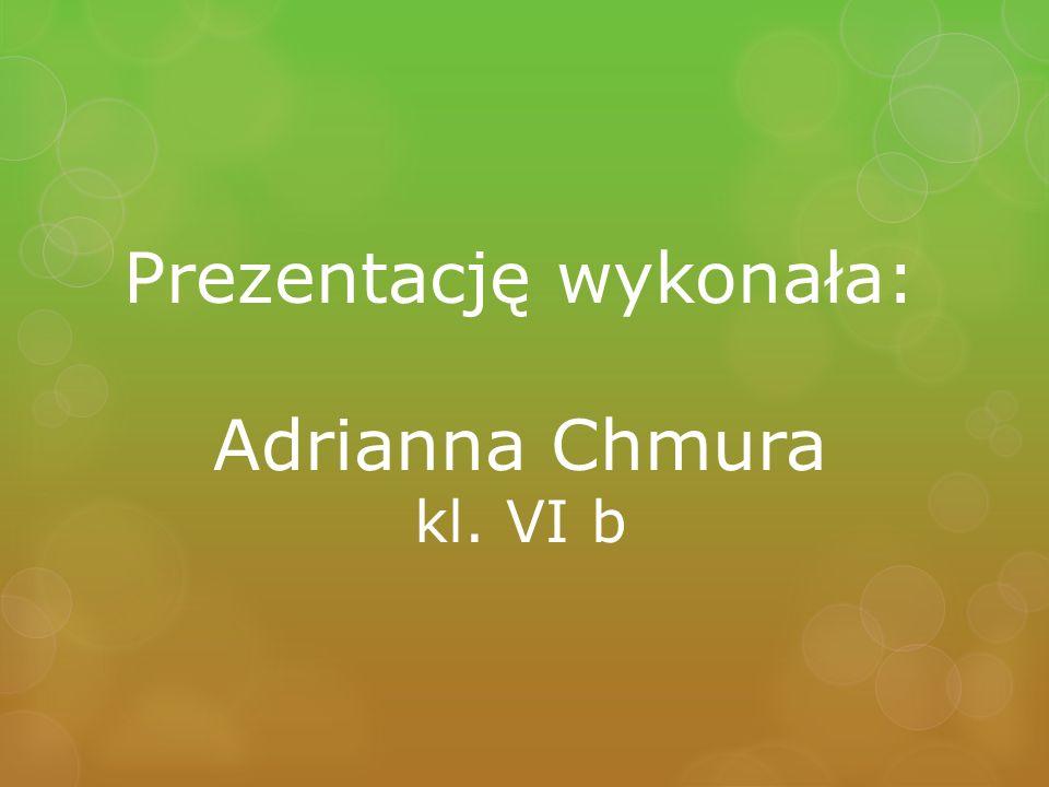 Prezentację wykonała: Adrianna Chmura kl. VI b