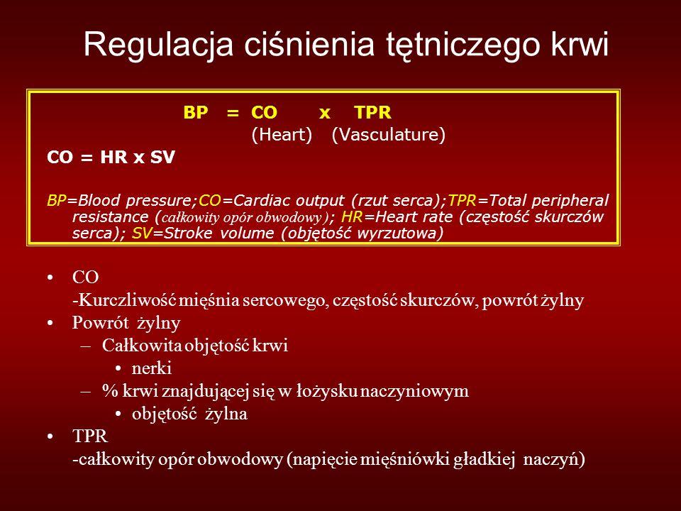 Regulacja ciśnienia tętniczego krwi