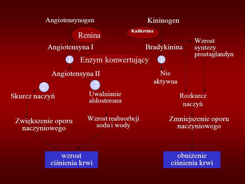 Renina 1 Enzym konwertujący 1 2 2 Kininogen Angiotensyna I Bradykinina