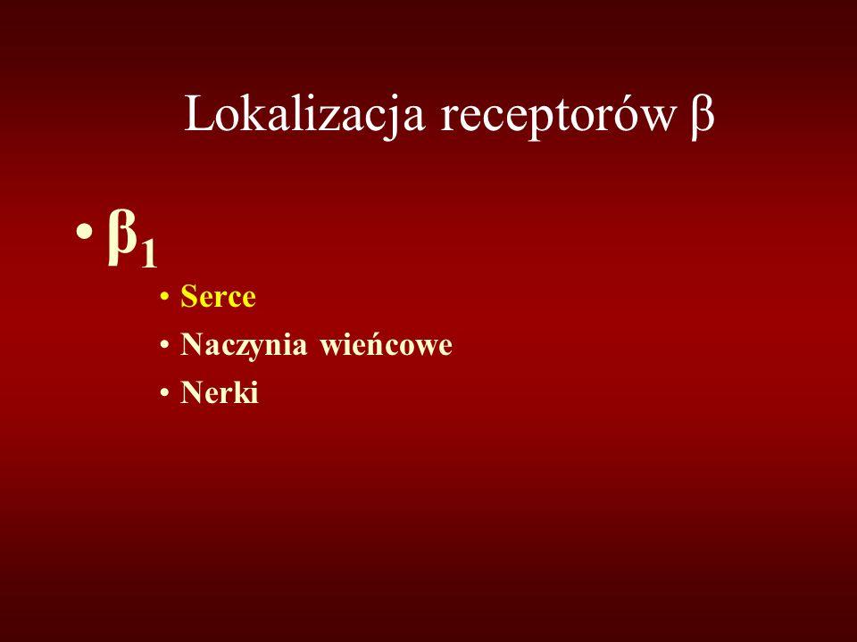Lokalizacja receptorów β